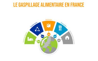 [ infographie ] Les chiffres du gaspillage alimentaire en France